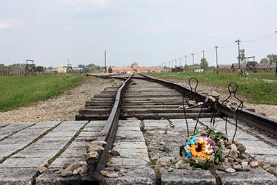 Birkenau - 2013 02