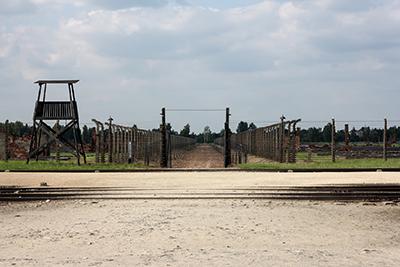 Birkenau - 2013